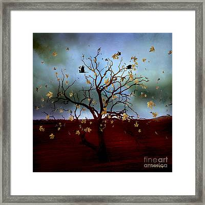 Framed Print featuring the photograph Scattered Thoughts by Chris Armytage