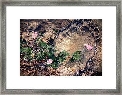 Scattered Treasures Framed Print by Caitlyn  Grasso