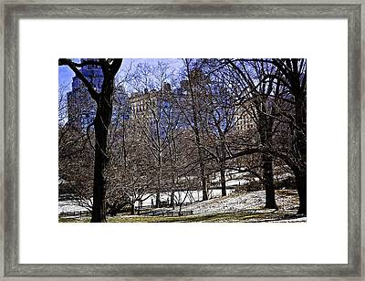 Scene From Central Park - Nyc Framed Print by Madeline Ellis
