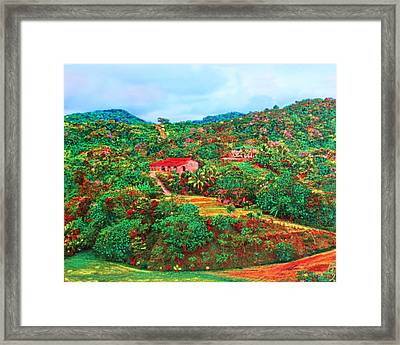 Scene From Mahogony Bay Honduras Framed Print