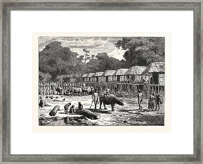 Scene In A Village In The Laos Country Framed Print