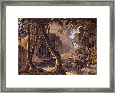 Scene In Sitsikamma - Elephants Framed Print by Samuel Daniell