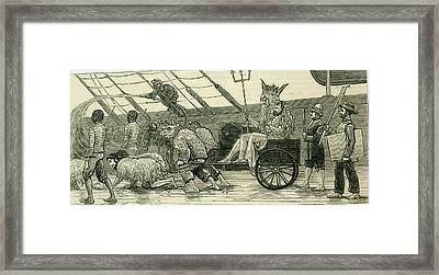 Scene On A Royal Navy Ship Framed Print by Mary Evans Picture Library