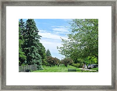 scenes from Canadian butterfly conservatory Framed Print by Toni Martsoukos