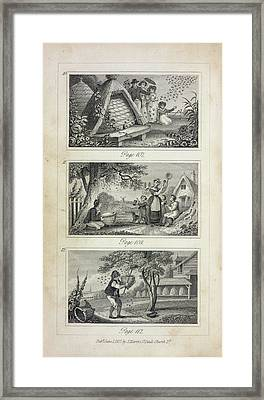 Scenes Of Industry Displayed In The Bee-h Framed Print by British Library