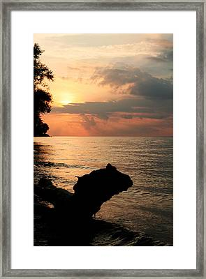 Scenic Beach Driftwood Sunset Framed Print by Heather Allen