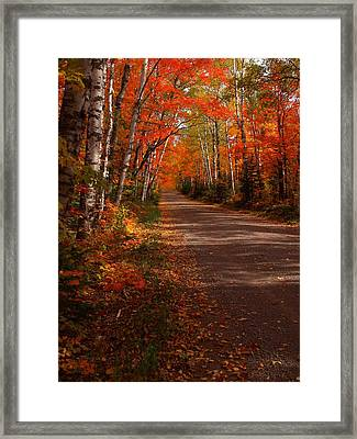 Scenic Maple Drive Framed Print