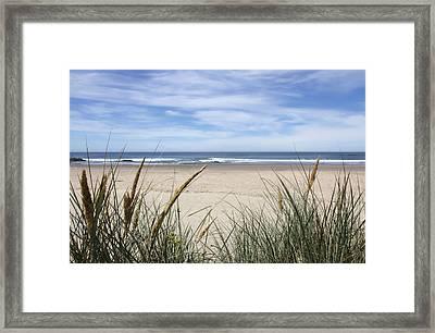 Scenic Oceanview Framed Print