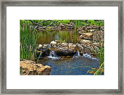 Scenic Pond Framed Print by Tim McCullough