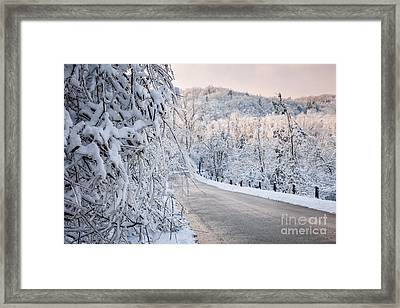 Scenic Road In Winter Forest Framed Print by Elena Elisseeva