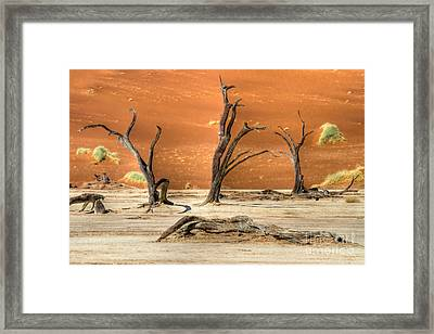 Framed Print featuring the photograph Scenic View At Sossusvlei by Juergen Klust