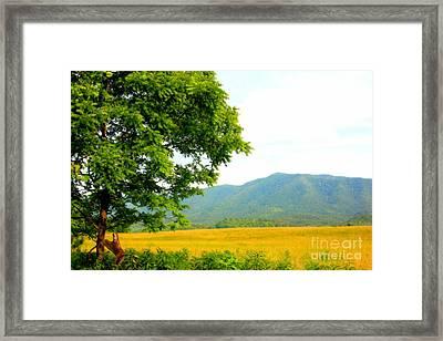Scenic View Framed Print