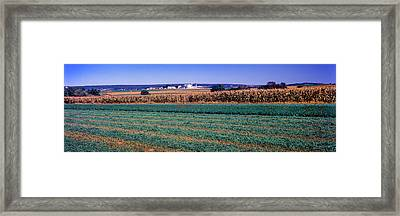 Scenic View Of A Farm, Pennsylvania Framed Print