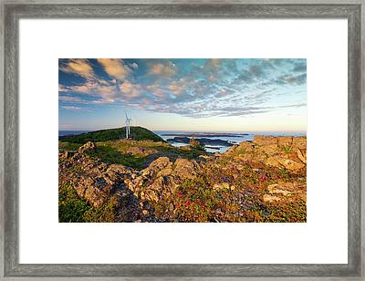 Scenic View Of Kodiak Island Framed Print by Marion Owen