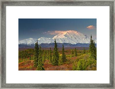 Scenic View Of Mt. Mckinley At Sunrise Framed Print
