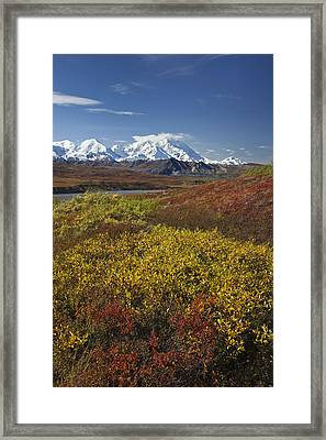 Scenic View Of Mt.mckinley From Framed Print