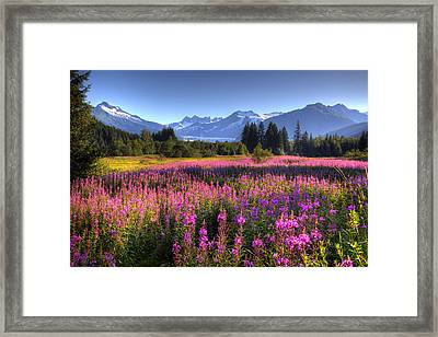 Scenic View Of The Mendenhall Glacier Framed Print by Michael Criss
