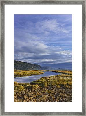 Scenic View Of Tidal Slough Along Framed Print