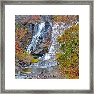 Scenic Vista Framed Print