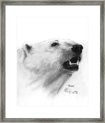 Scent In The Air Polar Bear Framed Print by Bob Patterson