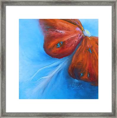 Schmetterlingsblume Framed Print by Karen  Kreuzer