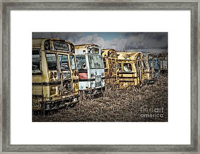 School Buses Framed Print