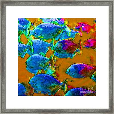 School Of Piranha V1 - Square Framed Print by Wingsdomain Art and Photography
