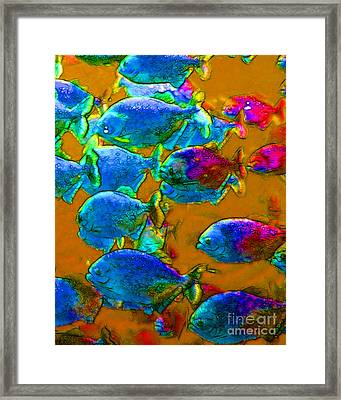 School Of Piranha V1 Framed Print by Wingsdomain Art and Photography