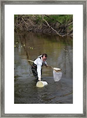Schoolteacher Collecting Water Framed Print