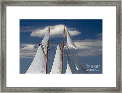 Schooner Germania Nova Sails Framed Print by Dustin K Ryan