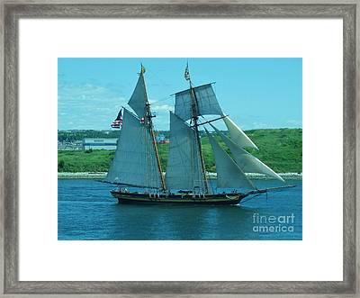 Schooner In Halifax Harbour Framed Print