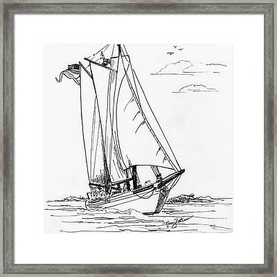 Schooner On The Bay 2  Framed Print