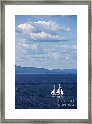 Schooner On The Bay Framed Print by Diane Diederich
