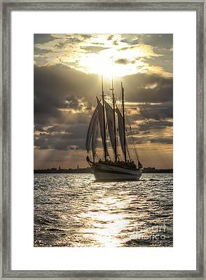 Schooner Pride Charleston Sc Framed Print by Dustin K Ryan