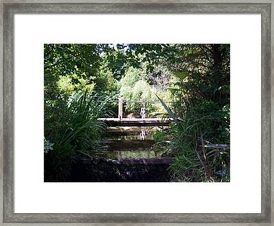 Schull  Ireland Framed Print by Conor Murphy