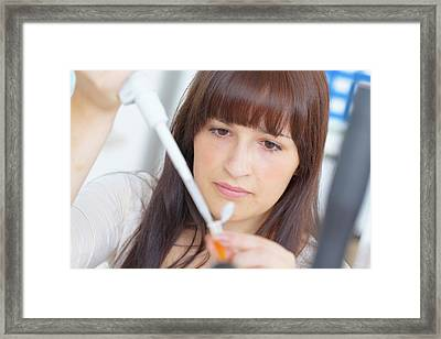 Science Student Using Pipette Framed Print by Wladimir Bulgar/science Photo Library
