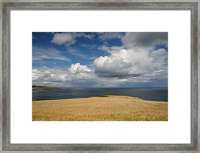 Scottish Coastal Wheatfield Framed Print by Jeremy Voisey