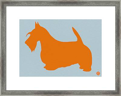 Scottish Terrier Orange Framed Print