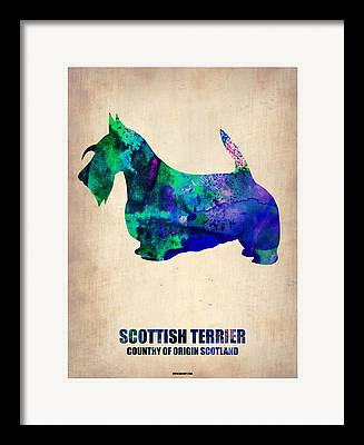 Scottish Terrier Watercolor Framed Prints