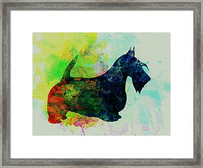 Scottish Terrier Watercolor Framed Print by Naxart Studio