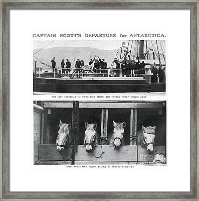 Scotts Departure For Antarctica Ponies Framed Print by Mary Evans