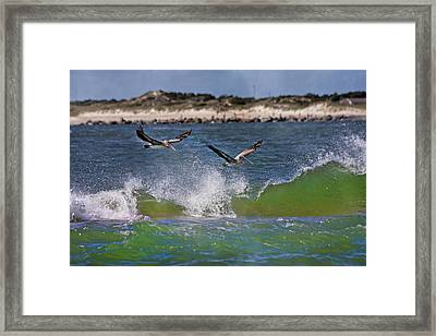 Scouting For A Catch Framed Print