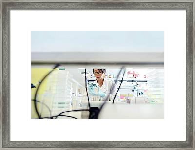 Scraping Cells From Tissue Culture Framed Print by Mcs