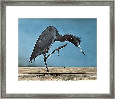 Scratch Actionwil 333-2 Framed Print
