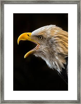 Scream For Freedom Framed Print by Bill Tiepelman