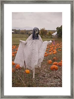 Scream Framed Print by Juli Scalzi
