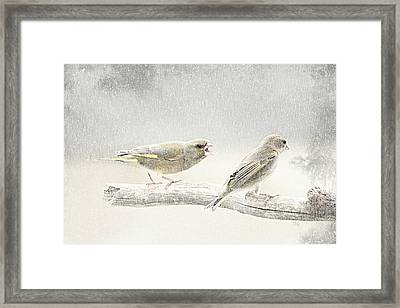 Screamers In The Snow Framed Print