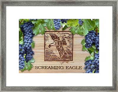 Screaming Eagle Framed Print