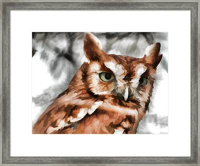 Framed Print featuring the photograph Screech Owl Photo Art by Constantine Gregory