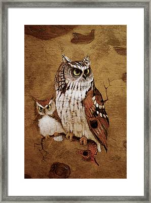 Screech Owls Framed Print by Richard Hinger